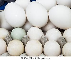 neobvyklý, kuře, organický, vejce, tlouška