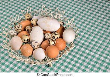 neobvyklý, vejce