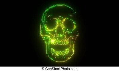 neon, video, czaszka, kolor, zielony, głowa, cyfrowy