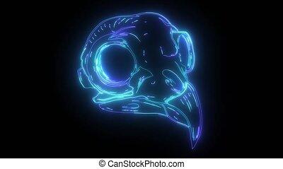 neon, video, czaszka, ptak, błękitny, cyfrowy