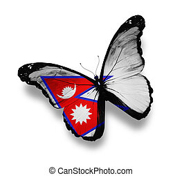 Nepal flag butterfly, isolated on white