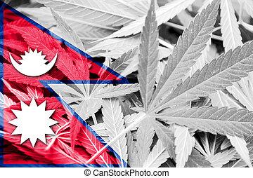 Nepal Flag on cannabis background. Drug policy. Legalization...
