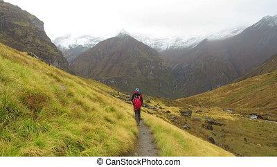 nepal, himalayas., wycieczkowicz, annapurna, zstępny, góra