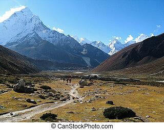 nepal, vally, alpino