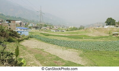 Nepalese field at spring.