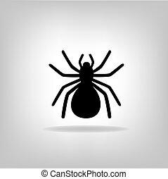 neposkvrněný, čerň, pavouk, grafické pozadí