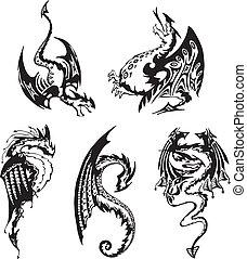 neposkvrněný, dát, čerň, drak