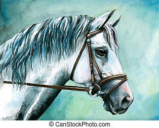 neposkvrněný, horse.