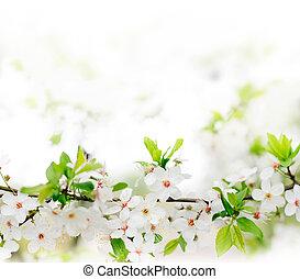 neposkvrněný, původ přivést do květu, dále, jeden, kopyto příkaz větvení