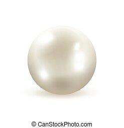 neposkvrněný, perla, vektor, ilustrace