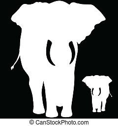 neposkvrněný, slon, ilustrace