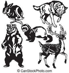 nero, bianco, set, animali