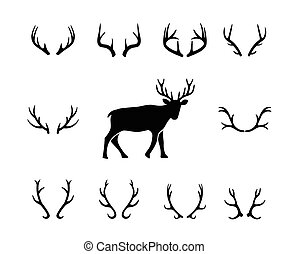nero, differente, cervo, silhouette, corna