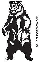 nero, grizzly, bianco