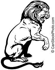 nero, leone, seduta, bianco