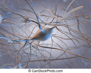 3d rendered illustration of a neuron cell