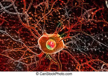 Nerve cells - 3d Nerve cells
