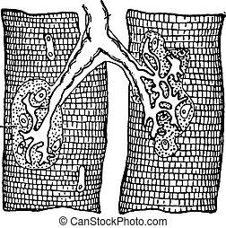 Nerve ending in muscle-fibers, vintage engraving. - Nerve...