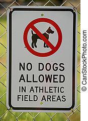 nessun cani, conceduto, segno