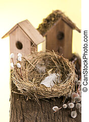 Nest box birdhouse - Birdhouse and bird's nest on the wooden...