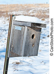 Nest Box in Winter - A nest box set up to attrac.t small...