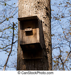 Nest box on a tree in a public park.