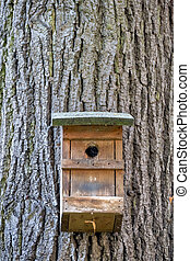 nest box on a tree - nesting box in a tree, symbol of animal...