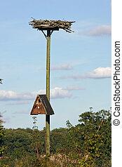 Nest boxes on pole