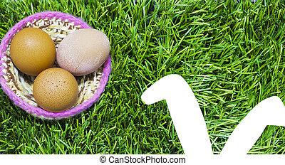 nest, kaninchen, ears., gras, ostereier
