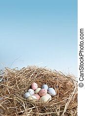 nest, mit, ostereier