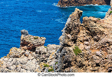 Nest of storks on rock. - Rock near shore with nest of ...