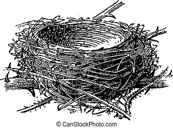 Nest of the Blackcap or Sylvia atricapilla, made up of twigs, grass, leaves, vintage engraved illustration. Dictionary of Words and Things - Larive and Fleury - 1895