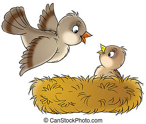 Nest - Bird flying to a nestling sitting in their nest