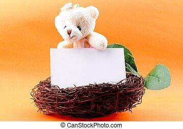 Nest with a blank card and Teddy bear