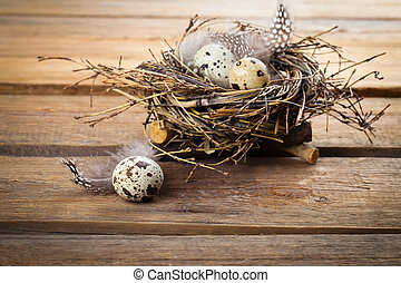 Nest with quail eggs on wooden background