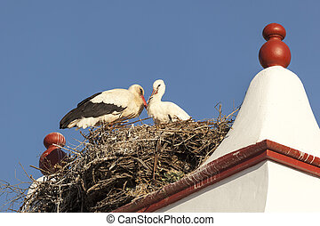 Nest with storks on top of a chimney