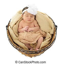 Nesting Newborn - An adorable newborn girl sleeping ...