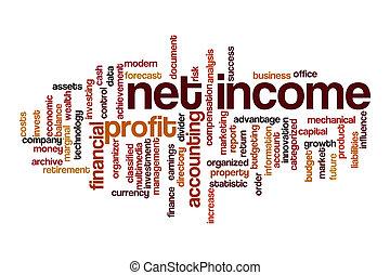 Net income word cloud concept