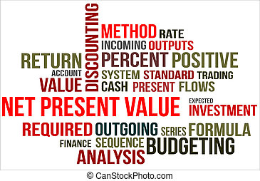 A word cloud of Net present value related items
