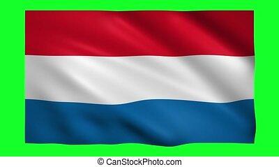 Netherlands flag on green screen for chroma key