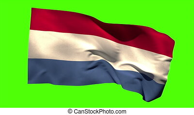 Netherlands national flag blowing in the wind