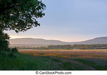 nett, landschaftsbild, mit, sonnenuntergang, licht