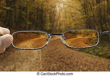 netto vision, von, a, herbst wald, pfad