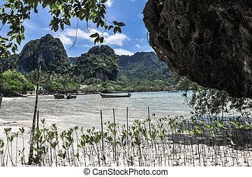 netto wasser, blau, sky., sandstrand, in, krabi provinz, thailand.