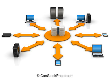 netwerk, databank