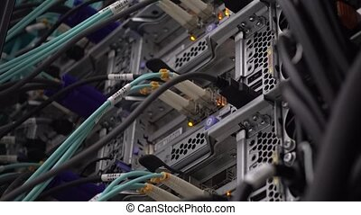 Network cable connecting on network core switch. Close up....