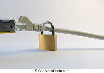 Network security - Connected ethernet cable portraying...