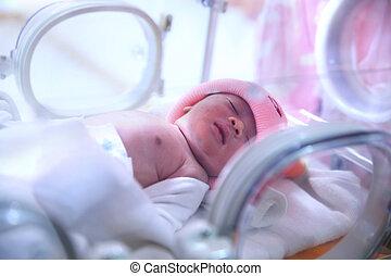 neugeborenes baby, klinikum, post-delivery, zimmer