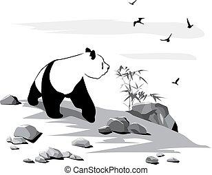 neugierig, panda