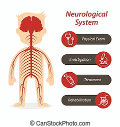 Neurological system and medical line icon